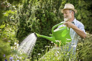 watering can old man 300x200